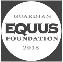 guardian-2018