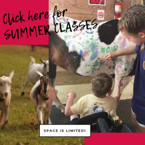 Summer Classes- website