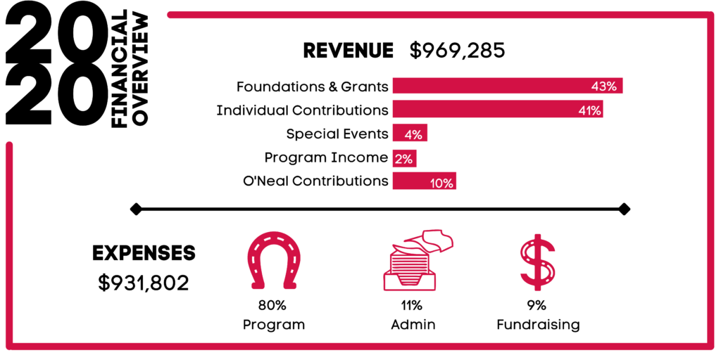 Financials Infographic 2020